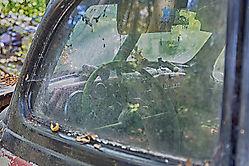 BMW - Blick ins Innere