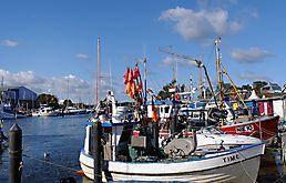 Im Niendorfer Hafen