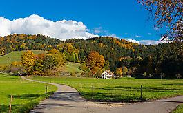 Herbst im Schwarzwald