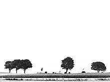 Minimalistisch-4