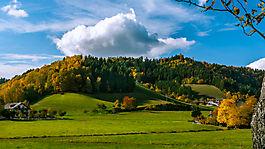 Noch vom Schwarzwald
