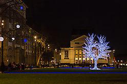 Bild des Monats - Dezember 2015