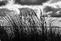 Himmel, Meer und Gras