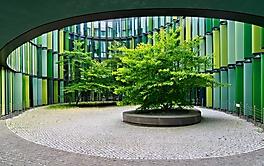 Innenhof gruen
