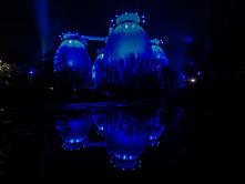 Blue Eggs-3