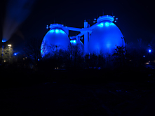 Blue Eggs-4