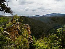 Mitten im Harz