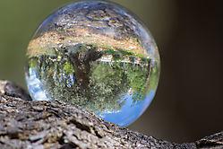 Lensball 10
