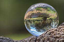 Lensball 11