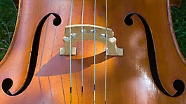 cello e