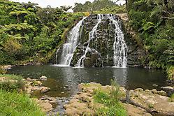 Owharoa Falls - Nordinsel