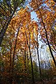 Herbst an der Gloer