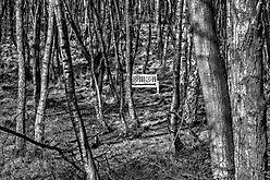 Rastplatz am Neandertalweg
