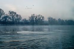 Morgennebel am Fluß - I