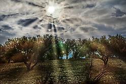 Kreta - Unterwegs
