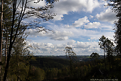 9-September_Wo_ist_der_Wald