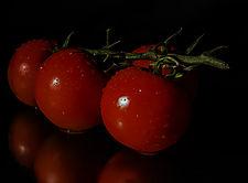 Tomaten_IMG_9461