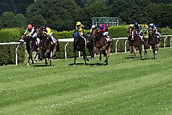 Pferderennen 1