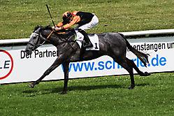 Pferderennen 5A