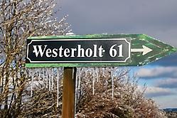 Eisglitzer im Westerholt