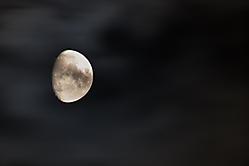 Mondverschmutzung