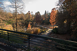 Letzte Herbsttage
