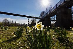 Frühling im LaPaDU