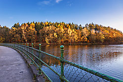 Herbstspaziergang 3