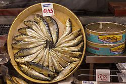 Sardina Salada