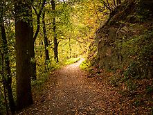 Verträumter Herbst an der Wupper - 4