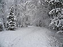 Winterwunderland 2021