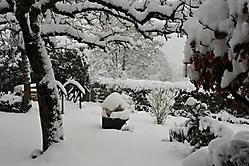 02 2021 Januar Schnee