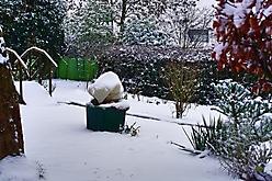 01  2021Januar Schnee