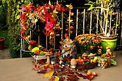 Herbst auf meiner Terrasse