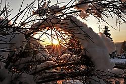 Abendsonnenfenster